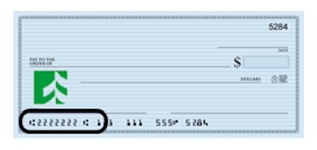 associated bank sample check